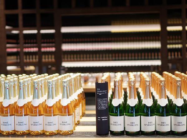 サドヤ ワインの陳列
