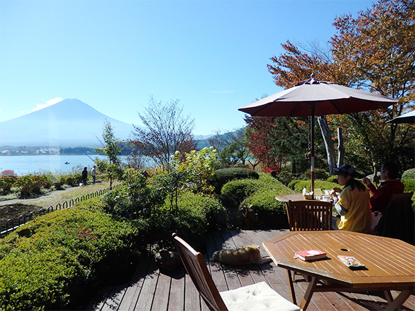 レイクベイク 富士山とテラス席