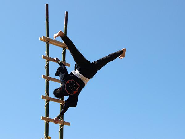 山神宮祭典 梯子登り妙技